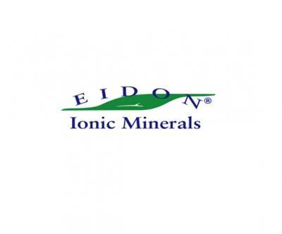 Eidon, Inc