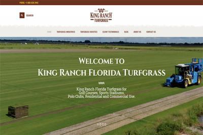 King Ranch Florida Turfgrass